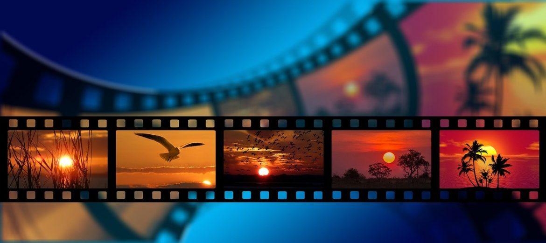 Cinéma week-end. «ADN», «Drunk», «Slalom» et «Falling» : nos choix pour le retour dans les salles